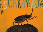 chico escarabajo M.G. Leonard