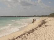 hacer playa Carmen