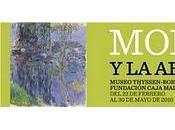 'Monet abstración', Museo Thyssen