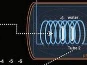 ¿Puede teletransportarse ADN?