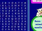 Juegos Memoria: Sopa Letras