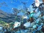 plástico: solución problema ambiental siglo