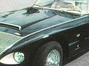 Jaguar Boano
