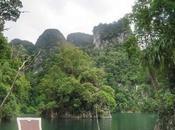 Videoblog: mejores productos para llevar selva. Desde Parque Natural Khao Sok. Tailandia