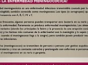 Calendario Vacunal Infantil: Enfermedad Meningocócica Serogrupo