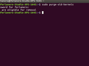 Borra, elimina #desinstala nucleos #kernels antiguos #ubuntu 16.04