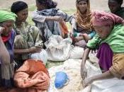 Combatir hambruna Etiopía está manos