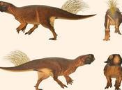 ¿Qué tanto alboroto Psittacosaurus?