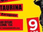 Manifestación antitaurina Zaragoza, Octubre