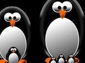 último cambio Google: ¡Penguin tiempo real!