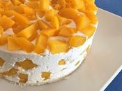 Bavarois yogurt mango