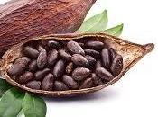 Falsos mitos sobre chocolate, cacao salud