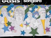 Oasis: Talking songbird yesterday