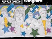 Oasis: Talking songbird yesterday