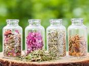 ¿Hacerles pruebas medicamentos herbarios tiene sentido?