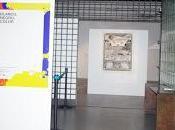 Crónica visita exposición blanco,negro color Institut Français