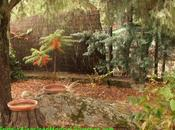 jardín presente