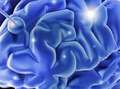 ¿Cómo competir inteligencia?