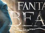mundo mágico Harry Potter... ¿con películas?