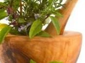 pediatras recomiendan suplementos plantas medicinales