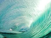 ¿Wave garden?