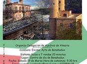 torneo ajedrez benahadux (almeria)