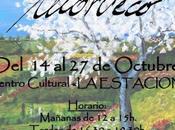 """Morueco"" expone Martín Valdeiglesias"