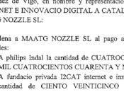 Maatg Nozzle condenada Sentencia 245/2015