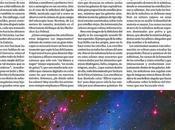 Doblete artículos dominicales