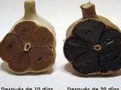 negro: muchas propiedades medicinales sabor fuerte