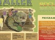 Taller Huerto Medicinal.