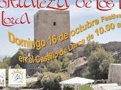 fortaleza libros (Lorca)