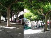 Melide arzúa camino santiago (día quinto)