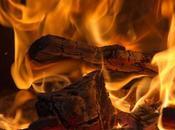 calor chimenea: demonio bueno nido madera