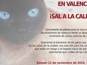 Contra muerte decenas Gatos Valencia, ¡Sal calle!