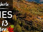 Folclore setas Otoñada este semana noviembre)