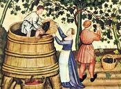Iii. vino (año 1330 archivo regional comunidad madrid)