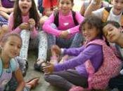 mejores colegios Medellín Estudio Sapiens Research