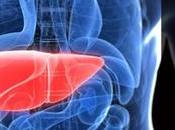 ¡Respeta hígado! consejos sobre cuidados.