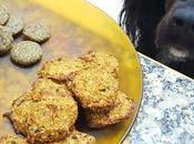 Galletas arándanos, manzana, avena plátano para perros humanos (vegan)