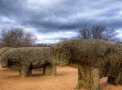 Curiosidades sobre toro bravo