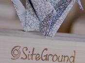 ¿Necesitas nuevo hosting? Atentos oferta BlackFriday SiteGround
