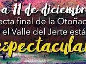OTOÑADA 2016 entra recta final Valle Jerte deslumbrante diciembre)