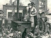 gatos historia vistos Laura Vocelle