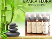 Terapia Floral Somatización Emociones