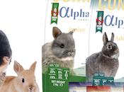 Alpha Adult Rabbit, dieta baja calorías, cereales azúcares alta fibras para salud óptima