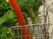¿Qué verduras pueden comer conejos?