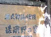 Santuario Nonomiya Jardín Musgo