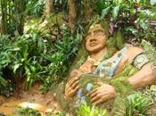 Reserva Natural Bichacue Yath