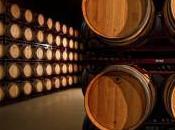 Bodegas Sobreño, elaboración vino excepcional Tinta Toro